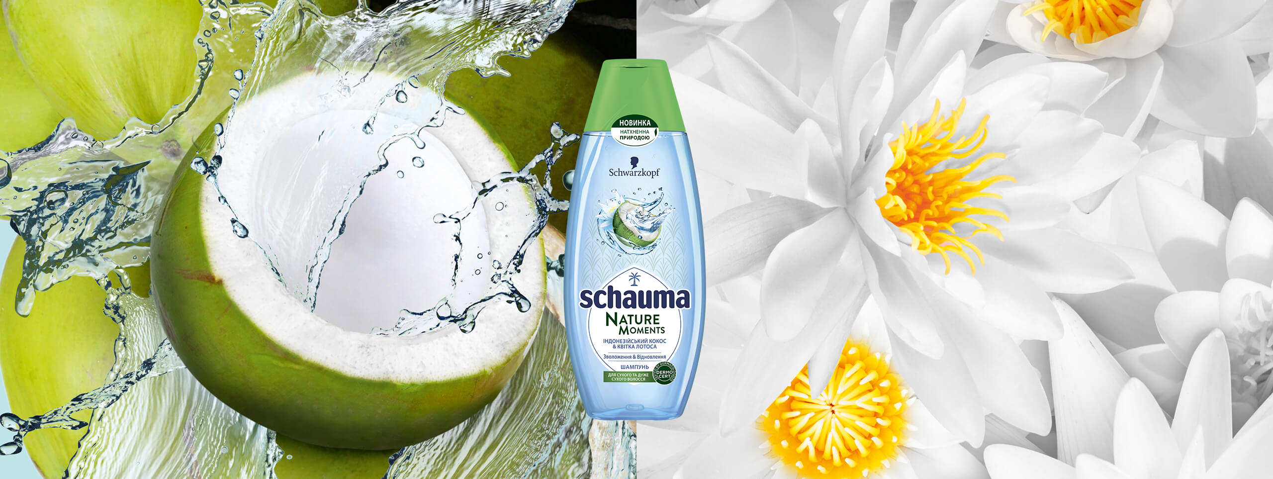 schauma_ua_nature_moments_indonesian_coconutwater_2560x963
