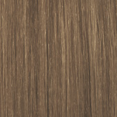 palette_com_cs_dark_blond_170x170
